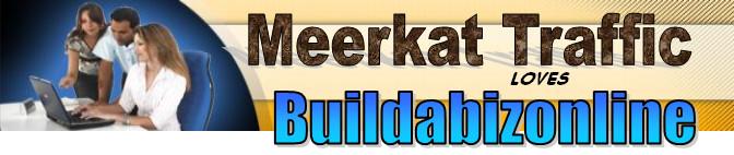 http://buildabizonline.com/images/meerkat-front-banner.jpg